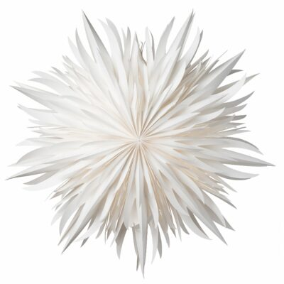 Eldig Julstjärna – 52cm Vit
