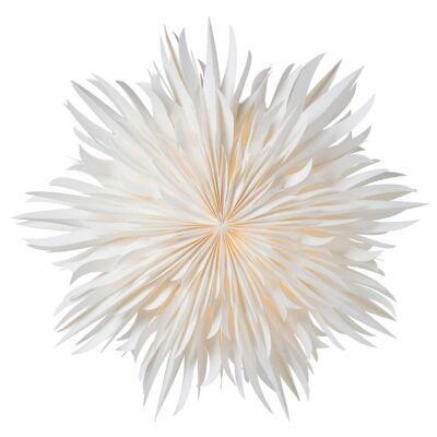Eldig Julstjärna – 70cm Vit